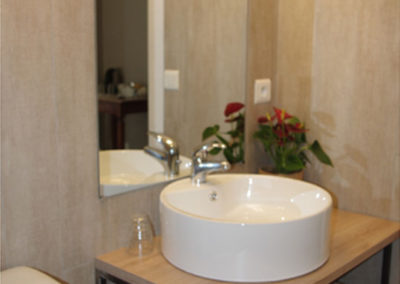 La Haute Maurelle⎥Chambre Glycine - La salle d'eau privative