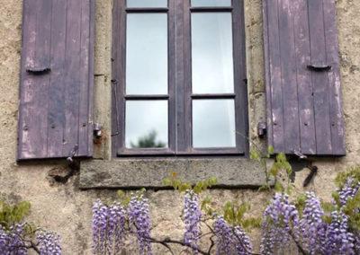 La Haute Maurelle - Maison d'hôtes et gîtes de charme en Ardèche - Glycine